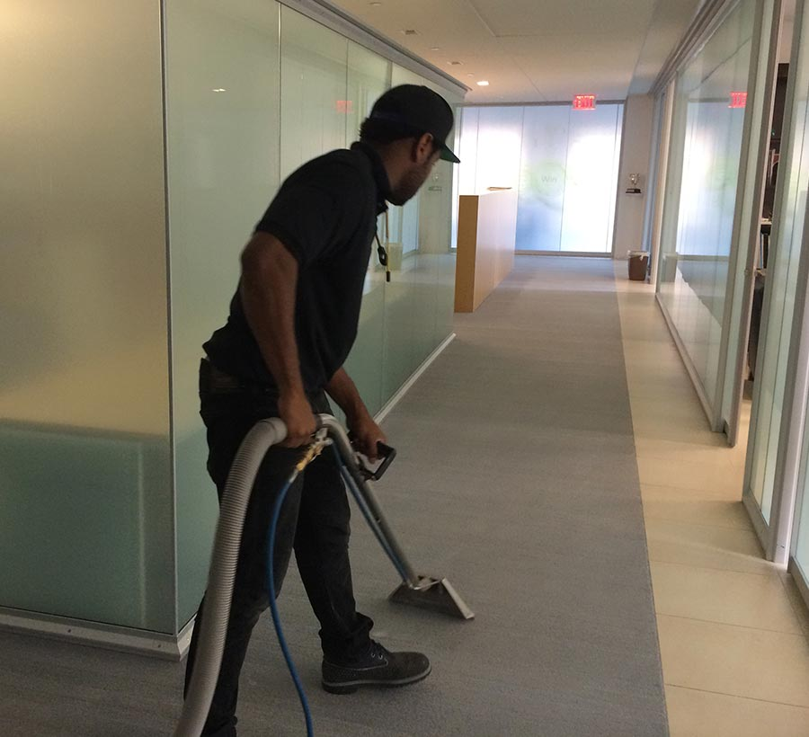 Carpet Cleaning Dallas Tx Carpet Cleaning Services